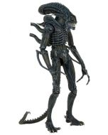 Aliens 1/4 1986 Warrior 56cm