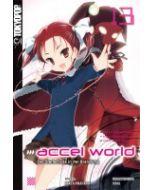 Accel World Novel #13