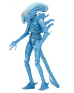 Aliens Ser. 11 Warrior (Kenner)