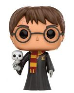 Harry Potter & Hedwig Pop! Vinyl