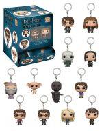 Harry Potter Mystery Pocket POP! Vinyl Keychains