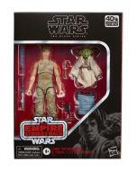 E5: Luke Skywalker and Yoda (Jedi Training) 15 cm Black Series
