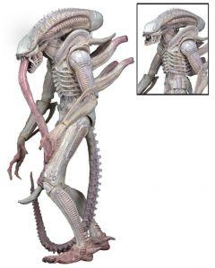 Aliens Ser.9: Xenomorph (Albino Drone)