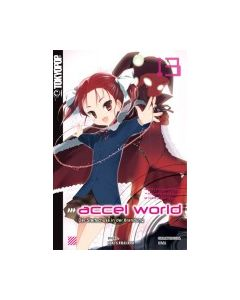 Accel World Novel #13