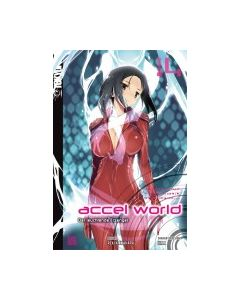 Accel World Novel #14