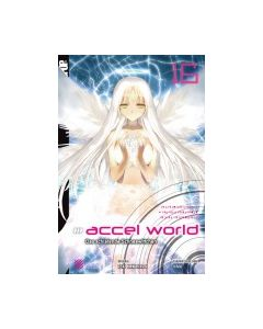 Accel World Novel #16