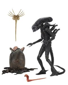 Alien (1979) Ultimate Big Chap 40th Anniversary 23cm NECA