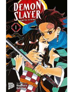 Demon Slayer - Kimetsu no Yaiba #01