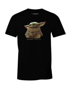 Star Wars Mandalorian: T-Shirt Unknown Species Child