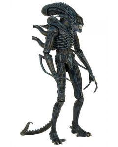 Aliens 1/4 1986 Warrior 56cm