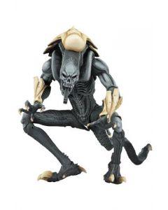 Alien vs Predator Alien Arcade Appearance Chrysalis Alien NECA