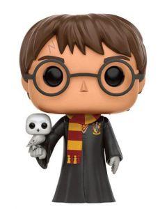 Harry Potter & Hedwig Pop! Vinyl