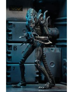 Aliens Ultimate Warrior Blue 23 cm