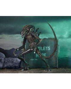 Aliens Ultimate Warrior Brown